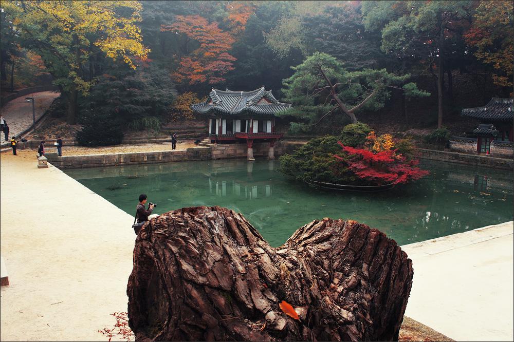 Changdeokgung01.jpg